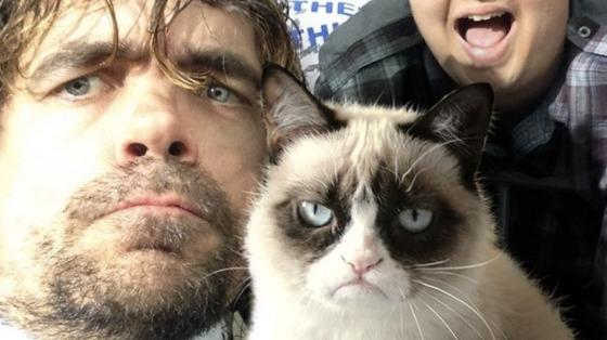 Peter-dinklage-grumpy-cat